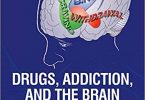 Drugs, Addiction, and the Brain 1st Edition PDF